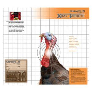 Scouting pre turkey muzzleloader hunting season