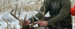 He was my first muzzleloader kill, what a thrill. I plan to pack my ultra-lite more often after seeing how effective it can be.  BBD.